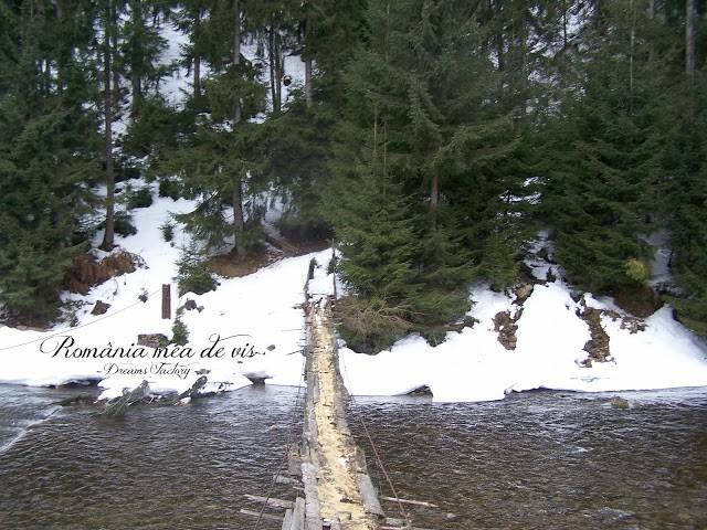 WINTER IN ARIESENI / IARNA LA ARIESENI ALBA, ROMANIA | DREAMS FACTORY