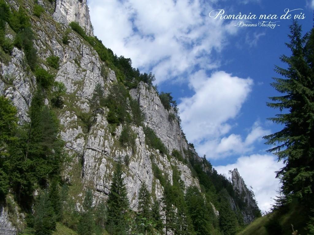 DAMBOVICIOARA KEYS / CHEILE DAMBOVICIOAREI, ARGES, ROMANIA | DREAMS FACTORY
