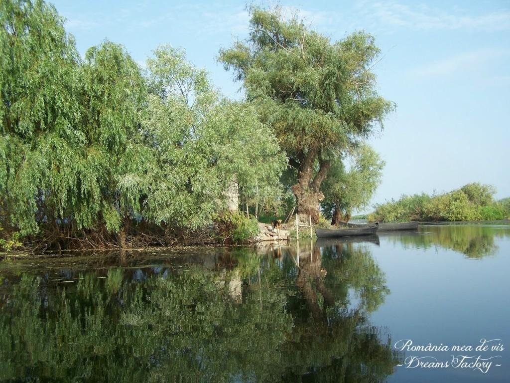 DANUBE DELTA / DELTA DUNARII, ROMANIA | DREAMS FACTORY