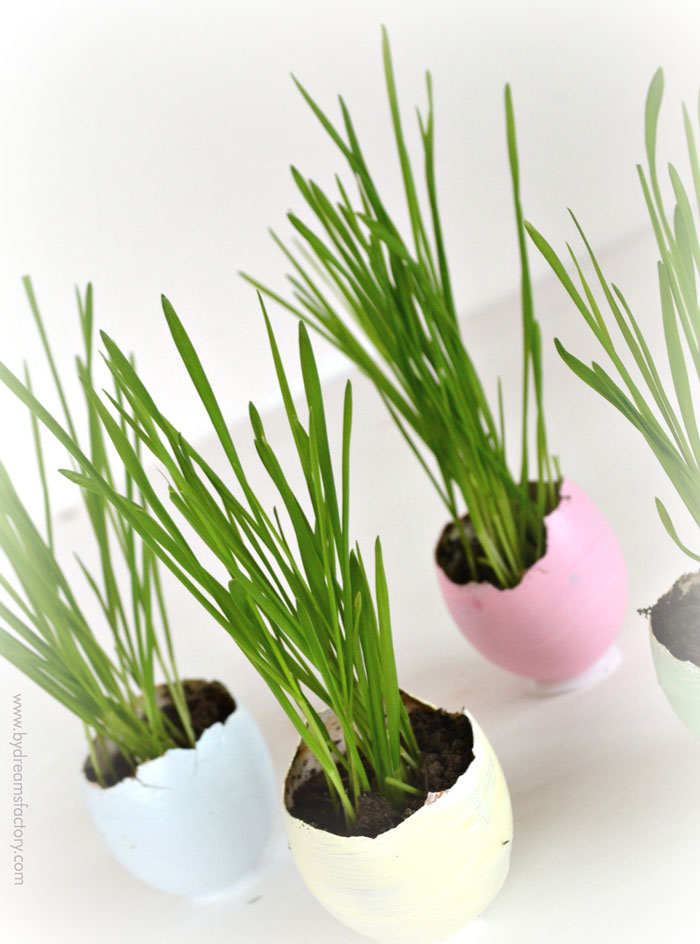 Use real eggshells to create beautiful Easter egg planters, paint them in pretty pastels and grow wheatgrass or flowers for your Easter decor - Dreams Factory