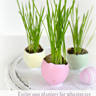 DSC_4624-easter-egg-planters-for-wheatgrass-in-pretty-pastels