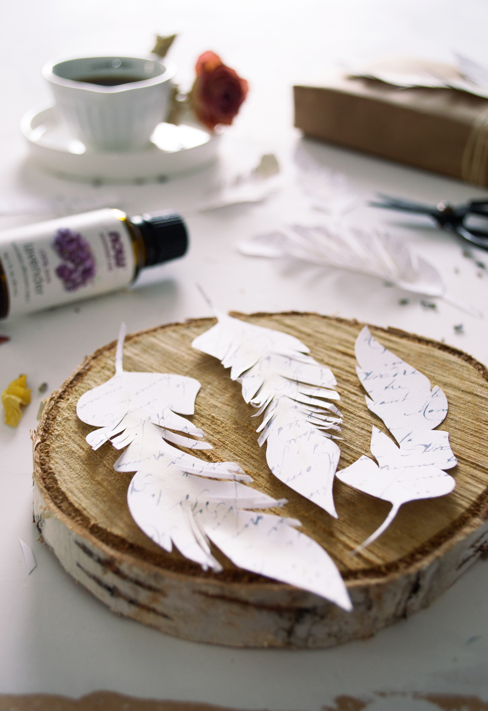 DIY French Script Paper Feathers - free printable